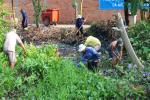 Công nhân lao động công ty hưởng ứng ngày nước sạch thế giới 22-3
