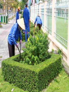Bộ phận Công viên cây xanh
